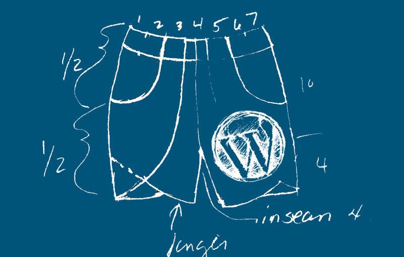 wordpress short 800x510 - Ton Wordpress en short(code) : un CV en ligne